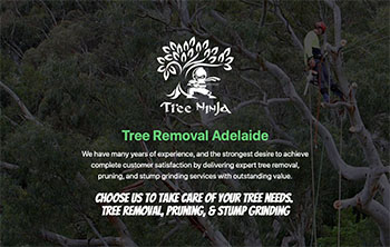 www.treeninja.com.au